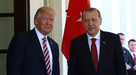 أردوغان وترامب يبحثان تطورات الأزمة الليبية